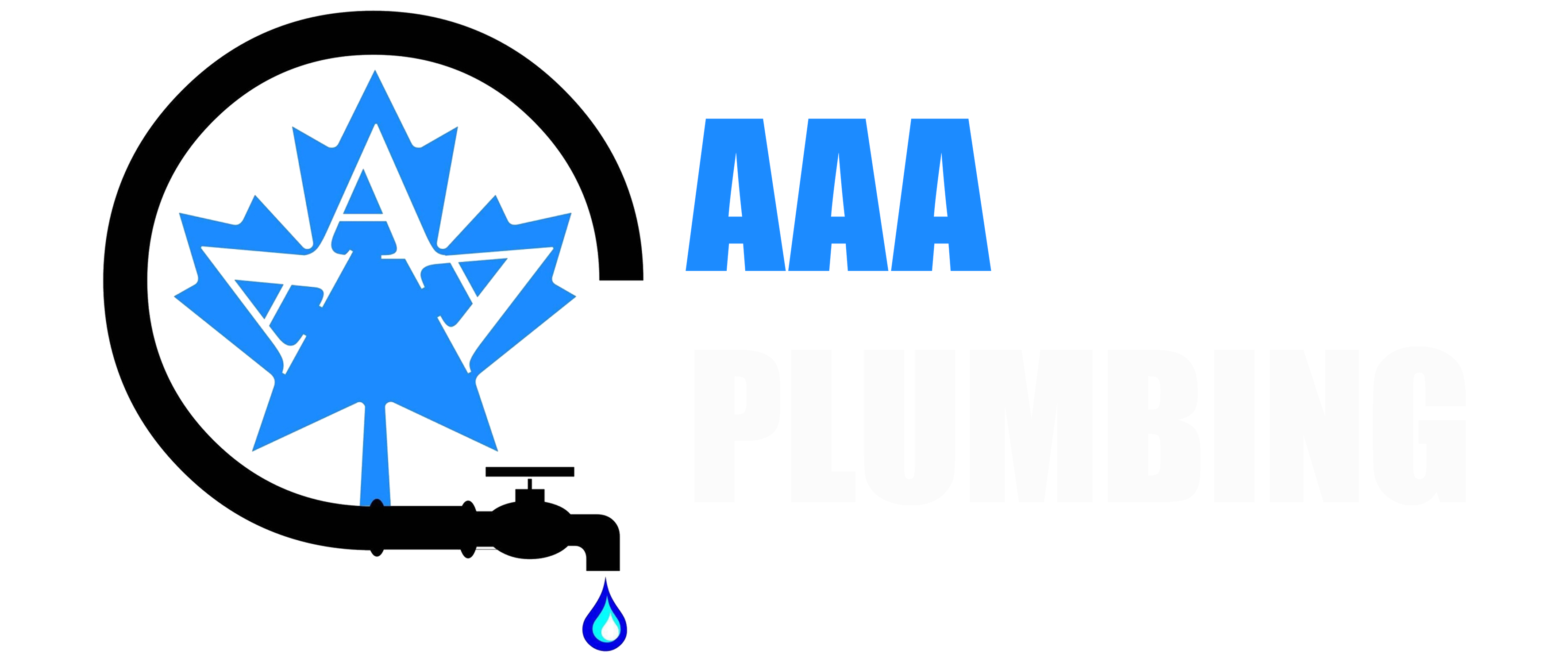 fl plumbing eagle swfl aaa commercial logo naples residential test